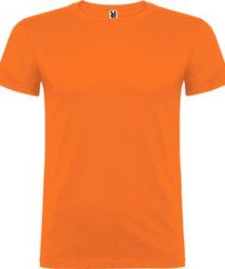 Naranja Beagle