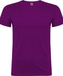 Púrpura Beagle